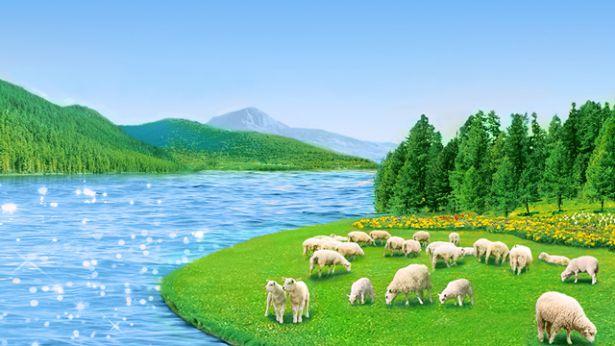 8. כיצד יש להבין שהמשיח הוא האמת, הדרך והחיים?