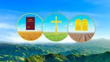 כיצד אלוהים הוביל וקיים את האנושות עד לימינו?