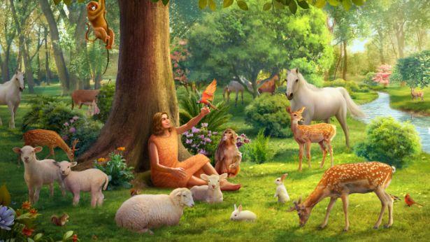 סיפור בראשית: מה היה רצונו של אלוהים שעמד מאחורי מתן שמות לכל החיות על ידי אדם?