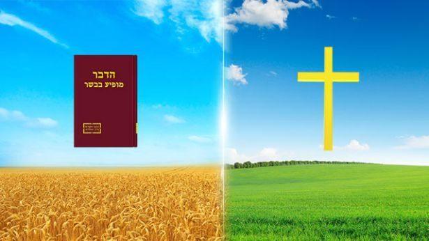 3. יש להכיר בהבדלים בין דרך ההכאה על חטא בעידן החסד ודרך חיי הנצח באחרית הימים.